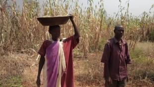 Deutsche Welle News: Drohende Hungersnot im Südsudan